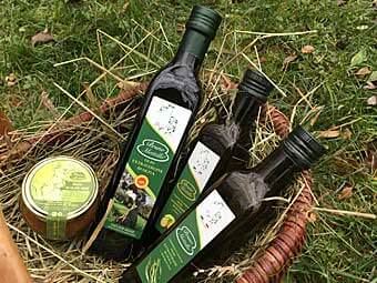 Olivenöl von Bruno Mottillo
